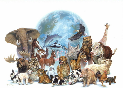 a comparison on the lives of animals and human beings known as speciesism Ncraoa - opinions and editorials on the animal rights agenda animal rights vs animal welfare human and non-human animals is an artificial construct designed to facilitate and justify the exploitation of non-human animals surely there will be some nonhuman animals whose lives, by.
